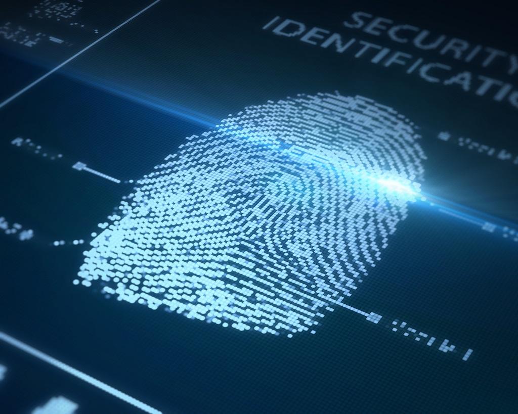 Twin fingerprints